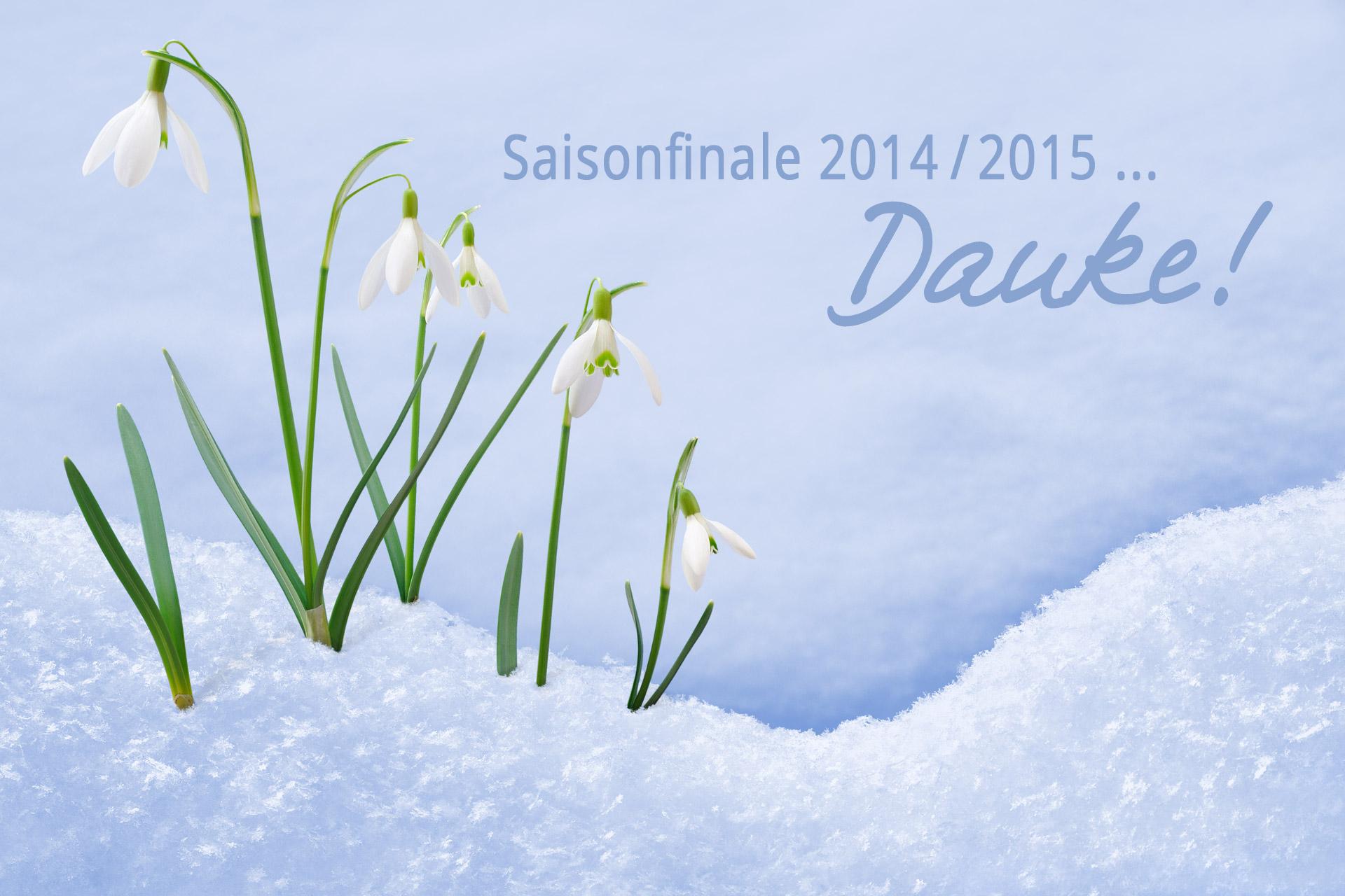 Saisonfinale 2015
